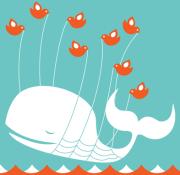 The Fail Whale