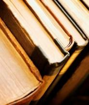 Books! Everywhere! Books!